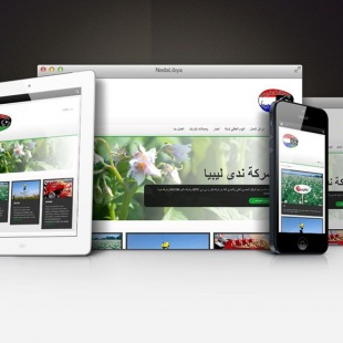 Website NedaLibya
